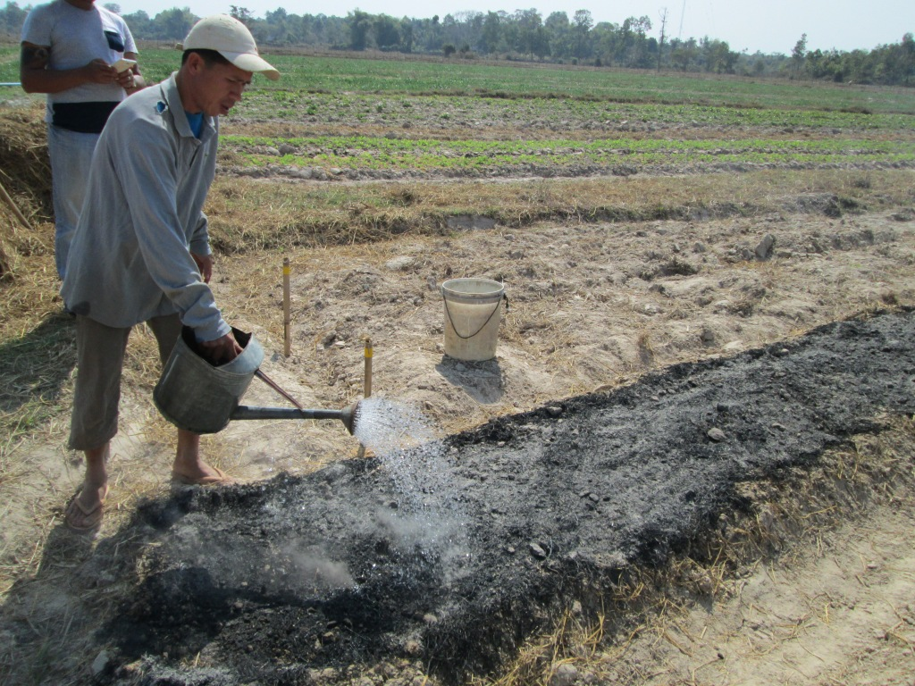 The farmer quenched the fire after the biomasses burned out completely leaving behind a mixture of ash, char, and soil.