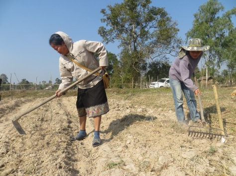 """Ms. Chanta, is the Agriculture Extension Officer for Phon Hong District located in the Vientiane Prefecture, Laos. She is the """"do it yourself"""" kind of person, which was appropriate to our needs."""