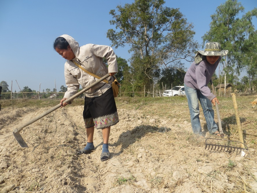 "Ms. Chanta, is the Agriculture Extension Officer for Phon Hong District located in the Vientiane Prefecture, Laos. She is the ""do it yourself"" kind of person, which was appropriate to our needs."