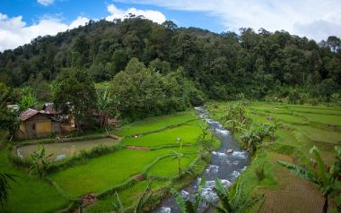 The agriculture-forest interface is the key to achieving global restoration goals